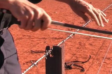 Колючая проволока (забор)